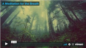 meditation for the breath
